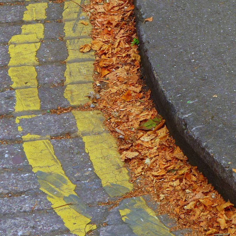Double yellow, leaves & no cars